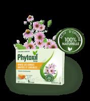Phytoxil Pastilles Gorge Pastilles Adulte Enfant +12 Ans B/20 à BU