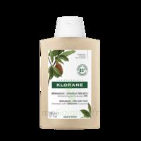 Klorane Beurre Cupuaçu Bio Shampoing Cheveux Très Secs 200ml à BU