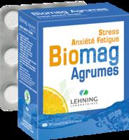 Lehning Biomag Comprimés à Croquer Agrumes B/90 à BU