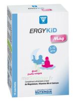 Ergykid Mag Poudre Solution Buvable 14 Sachets à BU