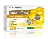 Arkoroyal Propolis Pastilles adoucissante gorge guimauve miel citron B/24 à BU