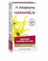 Arkogélules Hamamélis Gélules Fl/45 à BU