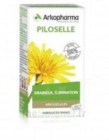 Arkogélules Piloselle Gélules Fl/45 à BU