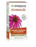 Arkogélules Echinacée Gélules B/45