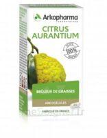 Arkogélules Citrus Aurantium Gélules Fl/45 à BU