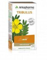 Arkogélules Tribulus Gélules Fl/45