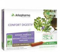Arkofluide Bio Ultraextract Solution Buvable Confort Digestif 20 Ampoules/10ml à BU