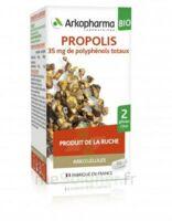 Arkogélules Propolis Bio Gélules Fl/45 à BU