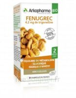 Arkogélules Fenugrec Bio Gélules Fl/40 à BU