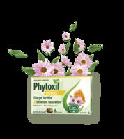 Phytoxil Gorge & Défenses Naturelles Pastilles B/20 à BU