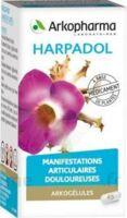 ARKOGELULES HARPAGOPHYTON Gélules Fl/150 à BU