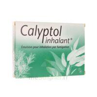 CALYPTOL INHALANT, émulsion pour inhalation par fumigation à BU