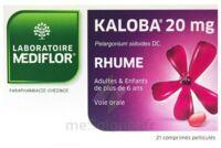 Kaloba 20 Mg Comprimé Pelliculé Plq/21 à BU
