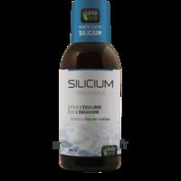 Santé Verte Silicium Solution buvable Fl/500ml