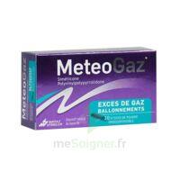 METEOGAZ Poudre orodispersible 10 Sticks à BU