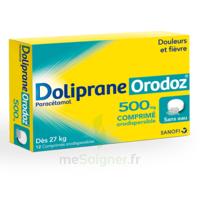 Dolipraneorodoz 500 Mg, Comprimé Orodispersible à BU
