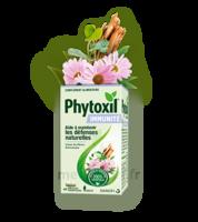 Phytoxil Immunité Gélules B/40 à BU