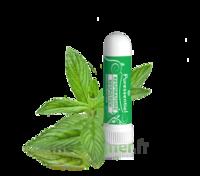 PURESSENTIEL RESPIRATOIRE Inhalation nasal 19 huiles essentielles à BU