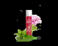 PURESSENTIEL ANTI-PIQUE Roller 11 huiles essentielles à BU