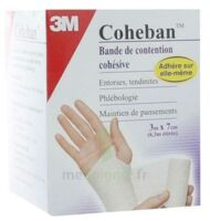 Coheban, Blanc 3 M X 7 Cm à BU