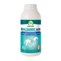 Audevard Balsamic Air 500ml à BU