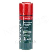 Dermophil Indien Réparation Forte Lèvres 4 G à BU