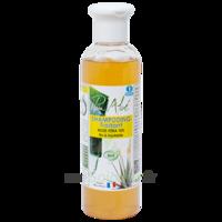 Puraloé Shampooing Traitant Bio Aloé Véra 250ml à BU