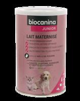 Biocanina Lait Poudre Maternisé B/400g à BU