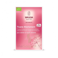 "Weleda Tisane Allaitement ""fruits Rouges"" 2x20g"