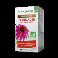 Arkogelules Echinacée Bio Gélules Fl/45 à BU