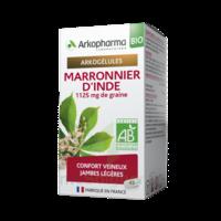 Arkogélules Marronnier D'inde Bio Gélules Fl/45 à BU