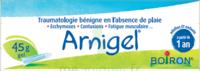 Boiron Arnigel Gel T/45g à BU